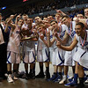MIAA D3 State Champions: Danvers Falcons. David Le/Staff Photo