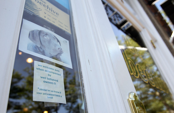 "The Beehive, on Front St. in Salem sports a sign on their front door inviting pets inside with ""well behaved owners."" David Le/Staff Photo"