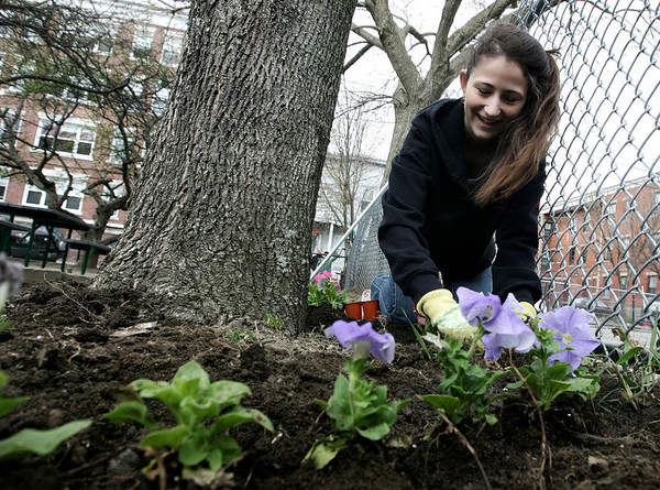 Salem: Emily Soghomohian, 15, of Salem helps to plant flowers around the base of the tree while volunteering for the Salem Rotary Club who helped to clean up Mary Jane Lee Park in Salem Saturday morning. Photo by Deborah Parker/Salem News April 18, 2009.