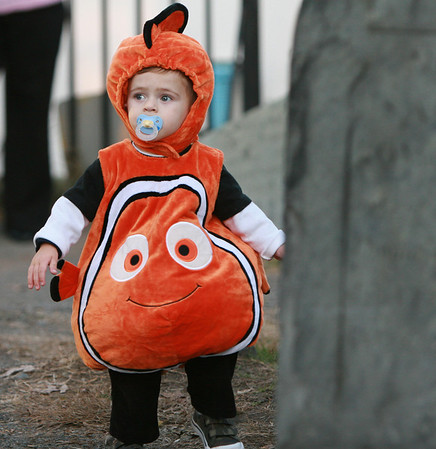 Salem: Mateo Rodriquez, 1, visiting from Long Island, explored a graveyard in downtown Salem while dressed as Nemo at the beginning of Halloween night Friday. Photo by Deborah Parker/Salem News, Friday, October 31, 2008.