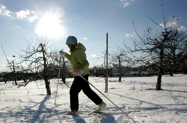 Peabody: Cordelia Tupping, 11, of Swampscott works to catch up with her dad, Roger, as they cross countried skiied at Brooksby Farm Saturday afternoon. Photo by Deborah Parker/Salem News Saturday, January 3, 2009.