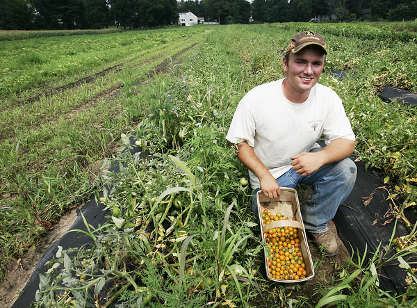 Josh Asherton shows off several tomatoes he has grown and planted on a plof of land on Cedar Street in Wenham. Asherton, a student at Beverly High School plans to go to college for farming. PHoto by Deborah Parker/August 5, 2009