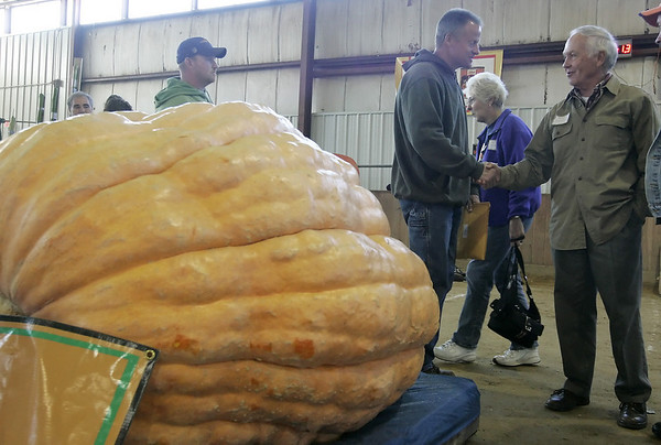 Topsfield: Wes Dwelly of Oakham is congratulated by fellow pumpkin competitor, Mark Breznick of Vermont  after winning the Topsfield Fair Pumpkin Weigh Off with a weight of 1,464 pounds. Photo by Deborah Parker/Salem News Saturday, October 04, 2008