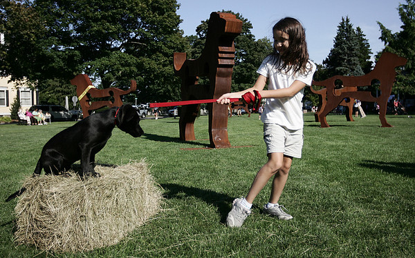Taviana Franciskato, 8, of Beverly, tries to persuade her puppy, April, to jump a hurdle in an obstacle course, part of the Big Dog Show at Beverly Common yesterday afternoon. Photo by Deborah Parker/Septmeber 3, 2009