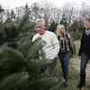For ten years, Henry Bertolon, has been growing christmas trees, on what used to be the Johnson tree farm in Beverly. This is the first year that Bertolon will have the farm open for business. Bertolon planted about 13,000 trees, with any revenue over his cost, being donated to charity. Here Bertolon walks through the property with his wife Donna and his daughter Jenn. photo by deborah parker/november 23, 2010