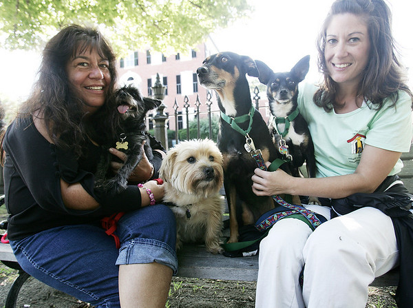 Salem resident Natalie Femino and her daughter, Melissa Butcher, also of Salem are organizing Puppy Mill Awareness Day on the Salem Common this Saturday. Sitting with them are their dogs, from left, Little One, Freddy, Lady, and Prince. Photo by Deborah Parker/September 15, 2009