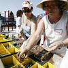 Gail Kelly of Lowell, left, and Claire Thompson of Beverly sort through the nuts and bolts that will be used to hold a newly constructed playground together located behind North Beverly Elementary School. This weekend volunteers including Mayor Scanlon and the company providing the equipment, UltiPlay, came together to put the playground together. Photographer Deborah Parker/August 22, 2009