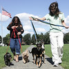 Salem resident Natalie Femino and her daughter, Melissa Butcher, also of Salem are organizing Puppy Mill Awareness Day on the Salem Common this Saturday. Walking with their dogs, from left, Little One, Freddy, Lady, and Prince. Photo by Deborah Parker/September 15, 2009