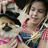 Both dressed as the Scarecrow from the Wizard of Oz, Annabelle Lord-Patey, 10, of Beverly and April, a seventh month old pomeranian, take a rest after walking for the judges during the annual Heritage Days dog show. This year, the theme of the show was Hollywood days. Photo by Deborah Parker/August 2, 2009
