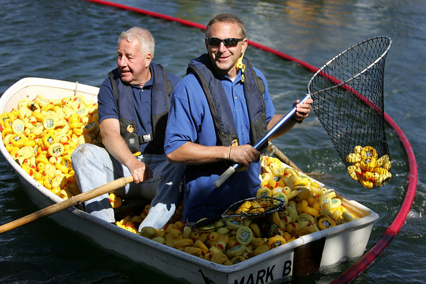Frank Herschede, left, and John Call of the Danvers Kiwanis Club pick rubber ducks from the water after being released off Pope's Landing as part of the Club's 16th Annual Rubber Duck Race. Photo by Deborah Parker/September 19, 2009