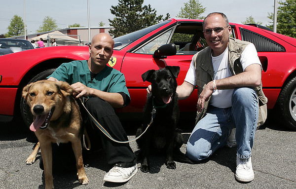 Salem: From left, Northeast Animal Shelter volunteer, Mike Abrunzo of Beverly sits with Cosmo, while Steve Cataldo owner of Custom Craft Motors in Danvers and Vettes for Pets organizer sits with Eden in front of his corvette. The event was a fundraiser for Northeast Animal Shelter. and include Corvettes, street rods, classics and muscle cars along with music, food and raffles and a professional dog training demonstration<br /> Photo by Deborah Parker/May 16, 2009