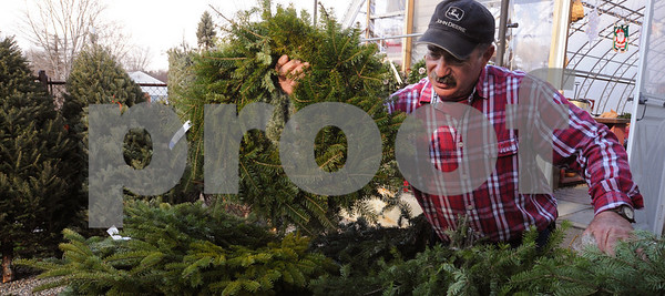 Danvers:<br /> Albie Petronzio, owner of Folly Hill Farm, arranges the wreaths and brush that is for sale at his business. He also sells Christmas trees and various seasonal decorations.<br /> Photo by Ken Yuszkus/Salem News, Monday December 1, 2008.