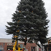 Danvers:<br /> The tree is maneuvered into place on Maple Street.<br /> Photo by Ken Yuszkus/Salem News, Tuesday, November 15, 2011.
