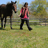 Hamilton:<br /> Lexi Chase, a 19-year-old Hamilton woman, bought a horse that was about to be shipped out for slaughter. The horse, which she has named Pipa, is the great grand-daughter of Secretariat. <br /> Photo by Ken Yuszkus/Salem News, Thursday, April 26, 2012.