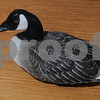 Marblehead:<br /> Various duck decoys are on exhibition at the Marblehead Museum and Historical Society. This is a minature goose carved by Bill Taylor which has caught the eye of many visitors to the museum.<br /> Photo by Ken Yuszkus/Salem News, Friday September 12, 2008.