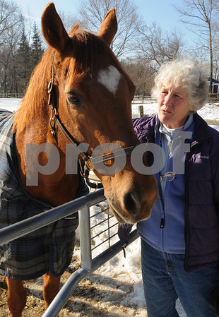 Hamilton:<br /> Susanna Collaredo, owner of the Black Oak Stables, provides foster care for 2 horses that have been surrendered due to a bad economy. Beans is one of the two horses.<br /> Photo by Ken Yuszkus/Salem News, Wednesday,  February 11, 2009.