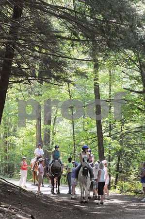 Topsfield:<br /> The group stops for a moment while on their ride through the forest. The free program for physically disabled people to be able to ride a horse was held at the Bradley Palmer State Park.  <br /> Photo by Ken Yuszkus/Salem News Friday, September 05, 2008