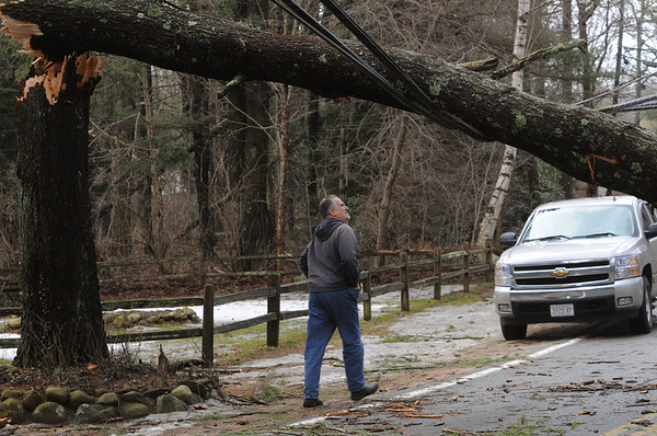 Boxford:<br /> Archie Butman of Boxford looks at the downed tree leaning on wires which is blocking his way on Herrick Street. The strong winds last night caused many downed trees and wires which closed roads.<br /> Photo by Ken Yuszkus/Salem News, Friday, February 26, 2010.