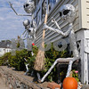 Peabody:<br /> The house at 68 Tremont Street is decorated for Halloween.<br /> Photo by Ken Yuszkus/Salem News, Tuesday October 21, 2009.