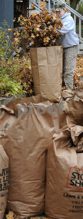 Beverly:<br /> Sarah Manfre bags some of the leaves she just raked in front of her house on her lunch break. Now that most of the leaves have fallen from the trees, it is now time to gather them up. <br /> Photo by Ken Yuszkus/Salem News, Thursday.November 13, 2008.