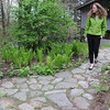 Ipswich:<br /> Cynthia Ingelfinger, of the Ipswich River Watershed Association, walks through the rain garden located at the Ipswich River Watershed Association. Greenscape gardens, like the rain garden, limit watering and fertilizer use by letting nature provide the landscapes' water and nutrient needs.<br /> Photo by Ken Yuszkus/Salem News, Thursday, May 12, 2011.