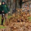 Salem:<br /> Jim Soper, of the Salem Parks and Rec. Dept., uses a leaf blower to move the leaves into piles before removing them at Salem Common.<br /> Photo by Ken Yuszkus/Salem News, Monday, November 28, 2011.