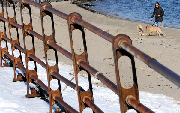 Beverly:<br /> Lisa Hubbard walks her two 4 month old golden retrievers, Dan and Mickey, on the beach at Independence Park on a brisk Wednesday afternoon.<br /> Photo by Ken Yuszkus/Salem News, Wednesday, February 9, 2011.
