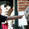 Salem:<br /> While being carried by his father, Matt, Joe Parmet, 2, points to a statue outside one of the businesses on Essex Street on Sunday during the Salem Haunted Happenings. They are from Wakefield.<br /> Photo by Ken Yuszkus/Salem News, Monday, October 10, 2011.