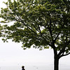 Beverly:<br /> A woman rides off on a bicycle after her stop under a tree at Dane Street Beach on a hazy Wednesday morning.<br /> Photo by Ken Yuszkus/Salem News, Wednesday, June 22, 2011.