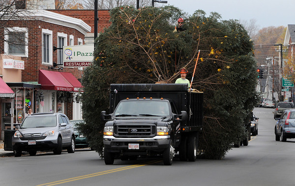 Danvers:<br /> Travis Reardon, tree climber, top, and Brian Richard, senior foreman, both from the DPW, forestry division, ride in the truck with the tree through downtown Danvers on Maple Street.<br /> Photo by Ken Yuszkus/Salem News, Tuesday, November 15, 2011.