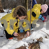 Topsfield:<br /> From left, Celeste Certrand and her twin sister, Isacella, both 6, of Beverly, and Phoebe Holz, 7, of Danvers, build animal shelters in the woods at the Ipswich River Wildlife Sanctuary. The children are participating in the winter vacation  camp where they learn about local wildlife.<br /> Photo by Ken Yuszkus/Salem News, Wednesday,  February 18, 2009