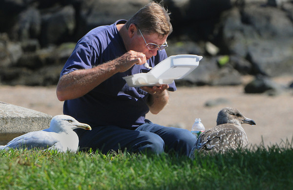 Salem:<br /> Raymond Dembkoski of Salem eats while being closely watched by two seagulls at Salem Willows Park.<br /> Photo by Ken Yuszkus/The Salem News, Wednesday, September 12, 2012.