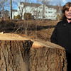 Beverly:<br /> Nancy Cunningham, who lives in the Dunham Road Castle condominiums in the background, is upset after Cummings Properties cut down hundreds of trees in front of her building.<br /> Photo by Ken Yuszkus/Salem News, Monday, January 30, 2012.