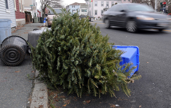 Beverly:<br /> A christmas tree lies discarded on Cabot Street. As Christmas passes all eyes are toward the next holiday, New Years.<br /> Photo by Ken Yuszkus/Salem News, Tuesday, December 29, 2009.