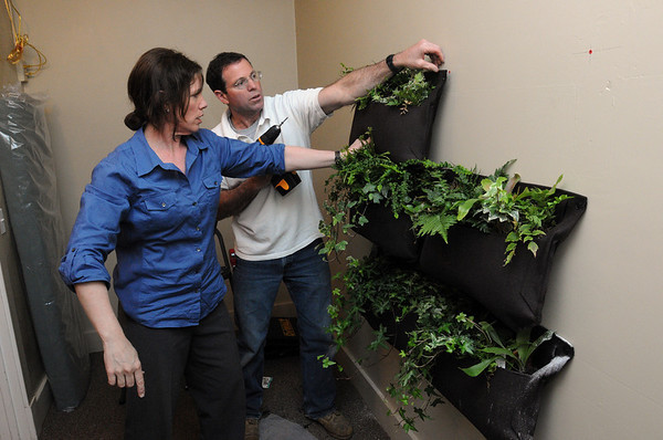 Wenham:<br /> Pat Finn, of Finn-Martens Design, and her brother, Tom Finn, hang plants on the wall while building their vignette for the upcoming North Shore Design Show at the Wenham Museum.<br /> Photo by Ken Yuszkus/Salem News, Tuesday, May 10, 2011.