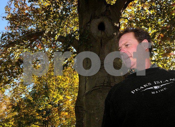 Ipswich:<br /> Ben Staples stands near the copper beech tree that he is trying to save. The 100-plus-year old tree has a variety of issues that has impacted its health.<br /> Photo by Ken Yuszkus/Salem News, Thursday, October 30, 2008.