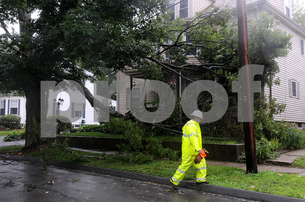 Danvers:<br /> Tree branches fell at 15 Hampshire Street because of the wind.<br /> Photo by Ken Yuszkus/Salem News, Monday, June 22, 2009.