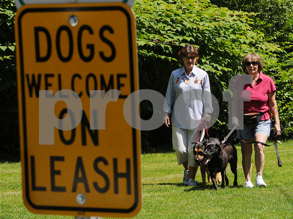 Danvers:<br /> Gail Tyrrell, left, with her dog Willie, and Judy Reardon with her dog Romeo, walk in the Lawrence Street Park. Gail Tyrrell, chairwoman of the Danvers Dog Park Committee, is promoting a dog park in town.<br /> Photo by Ken Yuszkus/Salem News, Tuesday, July 14, 2009.