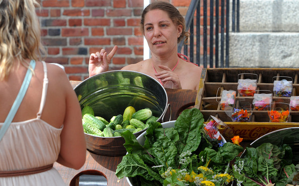 Salem:<br /> Heather Maitland of Salem speaks with a customer at her stand at the Salem Farmers Market.<br /> Photo by Ken Yuszkus/Salem News, Thursday, July 5,  2012.