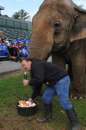 Topsfield:<br /> Tim Commerford, owner of Beulah the elephant, explains Beulah's tub of birthday food for her 43rd birthday party at the Topsfield Fair Wednesday morning. The group sitting in the background is from the Swampscott Headstart program.<br /> Photo by Ken Yuszkus/Salem News, Wednesday, October 5, 2011.