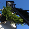 Peabody:<br /> Joe DaSilva, of the Peabody Fire Department, places  wreaths on the light posts along Main Street as decorations for the holidays.<br /> Photo by Ken Yuszkus/Salem News, Tuesday, Decmber 1, 2009.