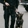 Salem:<br /> Salem canine police officer Jon Bedard leads K9 Thor.<br /> Photo by Ken Yuszkus/The Salem News, Thursday, January 31, 2013.