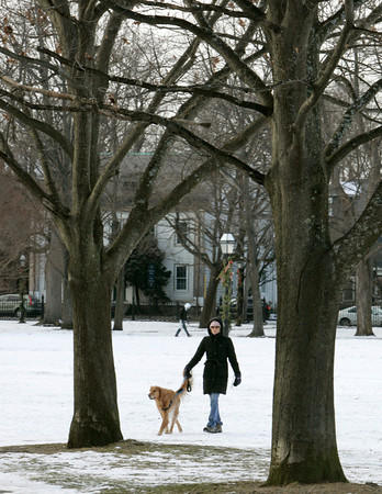 Salem:<br /> Despite the cold, Meg Butler of Salem and her dog Charlie walk through Salem Common Wednesday afternoon.<br /> Photo by Ken Yuszkus/The Salem News, Wednesday, January 2, 2013.