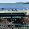 Salem: One of several benches over looking the harbor at Winter Island. A consultant led process on how to improve Winter Island is taking place. Photo by Mark Lorenz/Salem News