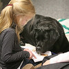 Swampscott: Kenzie Mclaren reads at the Swampscott Library to Merry, during reading to dogs to help kids be more relaxed while reading out loud. Kenzie is in kindergarten. Photo by Mark Lorenz