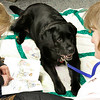 Swampscott: Kenzie Mclaren reads at the Swampscott Library to Merry, during reading to dogs to help kids be more relaxed while reading, sitting with them is Merry's owner, Donna Carmondy. Photo by Mark Lorenz