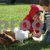 Marblehead: Talia Shelby,3 and her brother, Jackson, 5, feed the family chickens at their Marblehead home. The family started a backyard chicken coop and decided to put a webcam in the coop. Photo by Mark Lorenz/Salem News