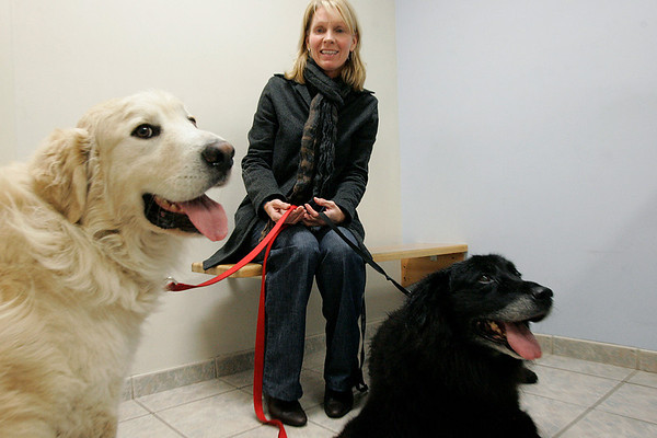 Danvers: Mary Misencik with  Mackie and McKinley.  Mackie, who was lost for three days before being found after a search by about 100 people. They were at Danvers Animal Hospital for Mackie's and McKinley's appointment. Photo by Mark Lorenz/Salem News