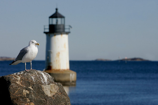 Salem: A consultant led process on how to improve Winter Island is being done. The island has many nice views, like the light house but most of the buildings are falling apart. Photo by Mark Lorenz/Salem News
