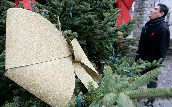 Salem:  Gary Gill who donated ornaments for the Christmas tree on Museum Place Mall looks over the tree. Photo by Mark Lorenz/Salem News